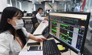 Cổ phiếu họ F rủ nhau tăng trong ngày HoSE vận hành hệ thống do Tập đoàn cung cấp