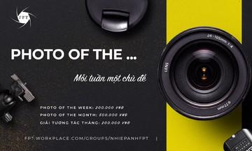 Hội nhiếp ảnh FPT khởi động cuộc thi sáng tác theo chủ đề