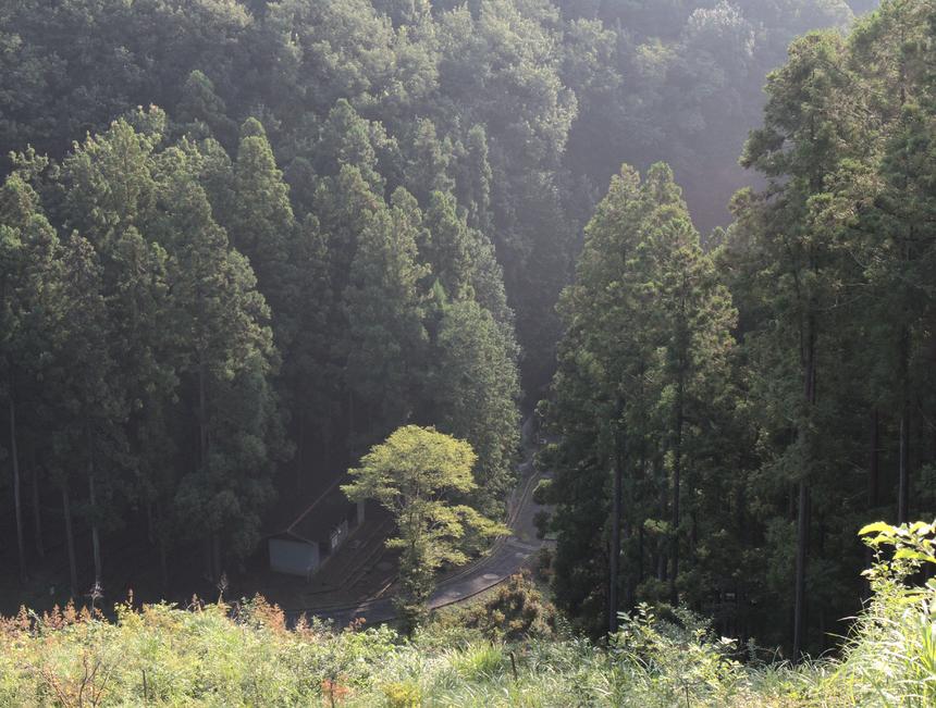 """<p class=""""Normal""""> Khung cảnh anh Nguyễn Trung Hiền chụp từ trên đường trail quanh dãy núi ở Ome, Tokyo, Nhật Bản.</p> <p class=""""Normal""""> Chia sẻ về bức ảnh này, anh cho biết:<span>""""Ome là nơi đầu tiên mình đến và ở trong thời gian 3 tháng ở Nhật Bản.</span><span>Ome được bao quanh bởi núi, đường xá có nhiều chỗ khúc khuỷu, dốc lên dốc xuống làm cho mình có cảm giác như ở quê nhà Đà Lạt, ngoài ra khí hậu ở Ome lúc mình sang rất giống với Đà Lạt. Vì thế, mình hay gọi Ome là """"quê"""" của mình ở Nhật Bản. Mỗi khi có dịp sang Nhật, mình đều sắp xếp về thăm 'quê'.</span></p> <p class=""""Normal""""> Mình vẫn nhớ lần đầu dạo trên đường trail này, đến khúc đứng từ trên đồi nhìn xuống cảnh này, bỗng mình nghe có tiếng harmonica du dương giữa núi rừng. Men theo âm thanh harmonica thì đến được ngôi nhà nhỏ trong ảnh, có vẻ như là một trạm nghỉ chân, hay một trạm gác bảo vệ rừng. Một anh bạn trẻ đang ngồi trong ngôi nhà say sưa luyện thổi harmonica.</p> <p class=""""Normal""""> Đến giờ, mỗi lần xem lại bức ảnh này, bên tai mình lại vang lên tiếng harmonica du dương..."""".</p>"""