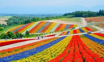 Hokkaido thu nhỏ qua ống kính nữ nhiếp ảnh gia FPT Japan