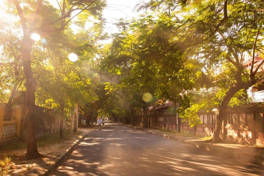 """<p class=""""Normal""""> """"Quốc học Huế chiều hè"""" bình yên của anh<span>Nguyễn Xuân Đinh khiến nhiều người F bồi hồi những kỷ niệm một thời trên con đường đi học.</span></p>"""